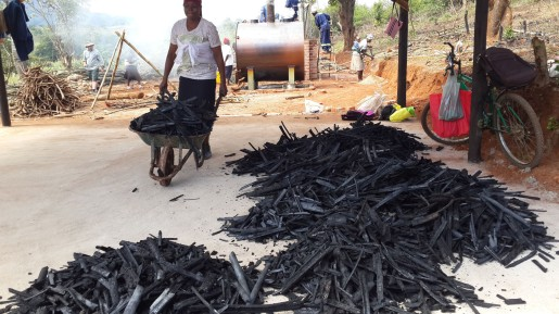 Bamboo-charcoal-production-at-Sagambe-Honde-Valley-Zimbabwe